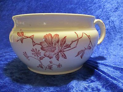 Excellent Condition Vintage Azalea Wedgewood & Co. Chamber Pot