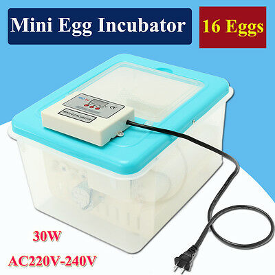 16 Eggs AC 220V-240V Automatic Chicken Poultry Chicks Incubator Hatcher Mini New