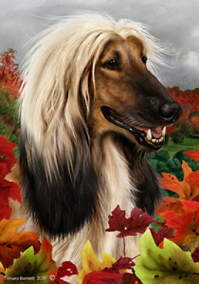Large Indoor/Outdoor Fall Flag - Afghan Hound 13087