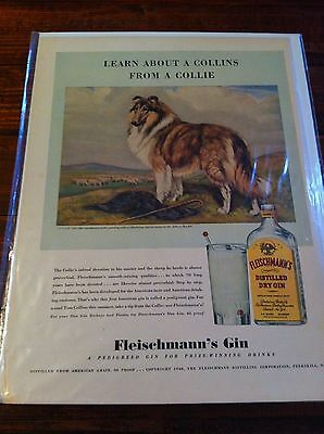 Vintage 1940 Fleischmann's Gin Learn About A Collins From A Collie Dog Print ad