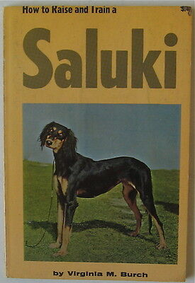 Vintage Saluki  Book  Saluki How To Raise