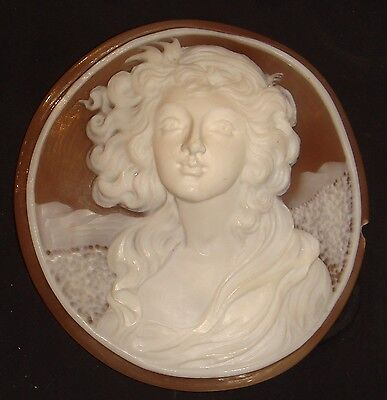 Antique Large Shell Cameo - Exquisite Carving - 3D