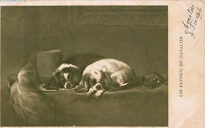 Sepia Cavalier King Charles Spaniel Dog Postcard PC France1905 Paris B. Sirven