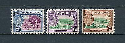 Dominica  101, 104-5 mint, King George VI definitives