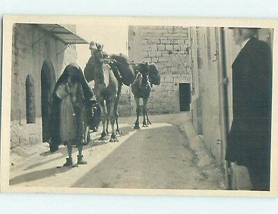 old rppc CAMELS BEING LED DOWN STREET Alger - Algiers Algeria HM2316