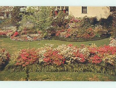 Pre-1980 TOWN WHERE PEOPLE LOVE THEIR FLOWERS Mccomb Mississippi MS hn3563-19