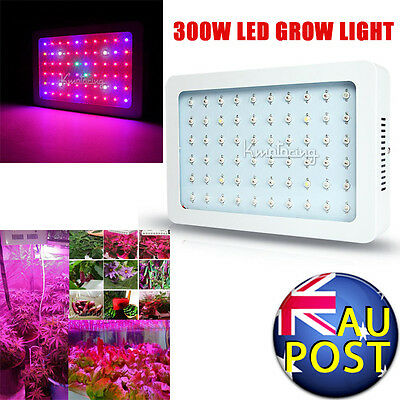 Full Spectrum 300W Combo LED Grow Light Panel Garden Hydroponic Veg Flower