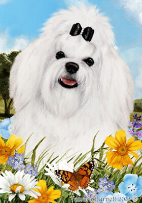 Garden Indoor/Outdoor Summer Flag - Maltese Pup 180411