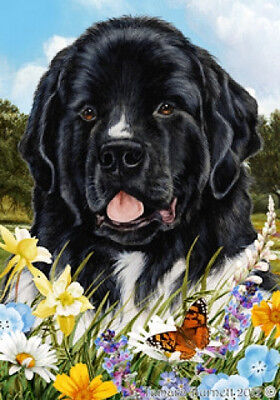 Garden Indoor/Outdoor Summer Flag - Landseer Newfoundland 182241