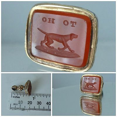 Victorian Intaglio Seal Fob motto To Ho - Blood hound Dog