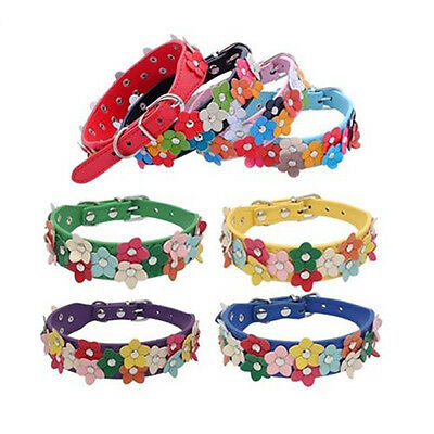Flower Studded Dog Collar Coller Pu Leather Pet Puppy Cat Neck Strap Colours