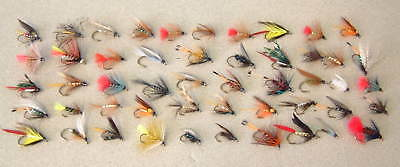 50 Assorted Trout & Grayling Wet Flies  Fishing  - New