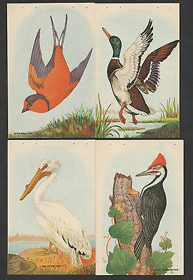 Sally Ann Bread Cards With Recipes~4 Bird Cards~#4~Combined S.& H..