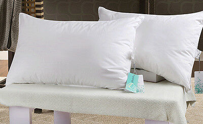 luxury Duck Down Feather Pillow 100% Cotton Cover Twin Pack Washable