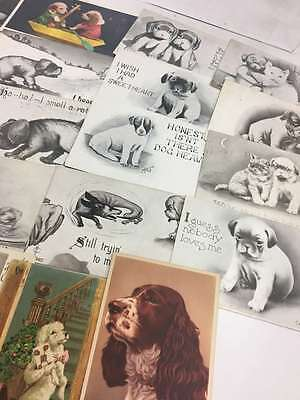 Group Of 23 Misc Dogs Puppies Different Breeds Greeting Antique Postcards K64811