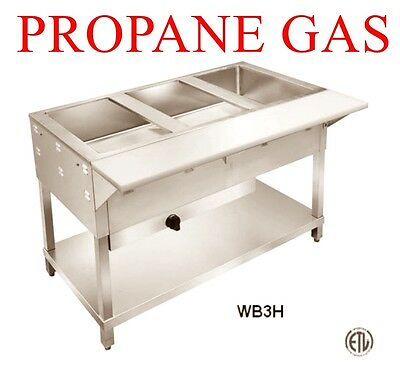 4 Foot wide Stainless Steam Table Propane LP Gas for Food Truck w/ cutting board