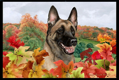 Indoor/Outdoor Fall Floor Mat - Belgian Malinois 40251