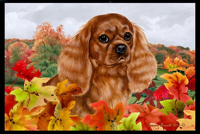 Indoor/Outdoor Fall Floor Mat - Ruby Cavalier King Charles Spaniel 40118