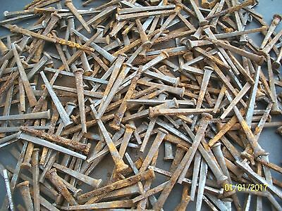 "60 - Orig. Antique, 2 1/8"" Long Square Head Steel Nails, Barn Find !"