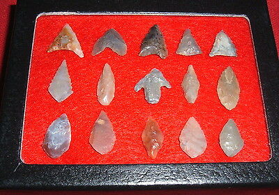 (15) Select Mini Sahara Neolithic Points W/CASE, Prehistoric African Arrowheads