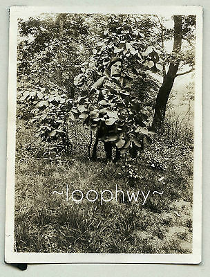 Odd Face Woman Takes Cover Behind Plant, Strange Quirky Vtg Old Snapshot PHOTO