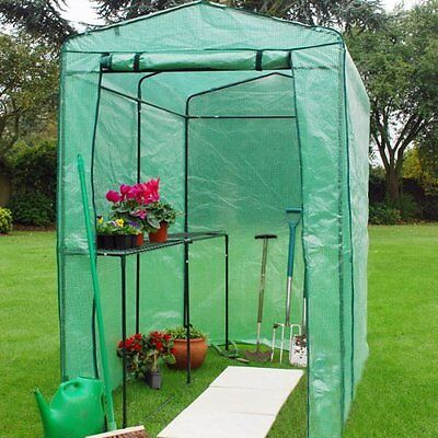 "Extra Large Greenhouse Grow house 4ft  x 6ft 6"" Walk In Plastic Plant Vegetables"