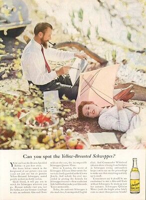 Schweppes Yellow-Breasted Whitehead Gin & Tonic ad 1955