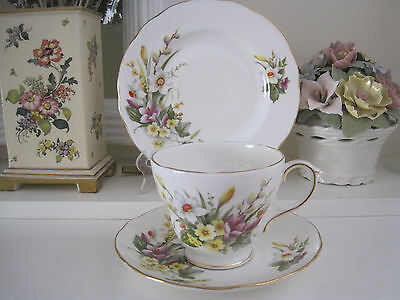 Beautiful Vintage Duchess Spring Fine Bone China Trio ~ As New