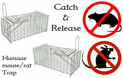 2x X-LARGE Rat Catcher Spring Cage Trap Humane Live Animal Rodent Indoor Outdoor