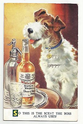 re scotland scottish postcard dog advertising dewar whisky