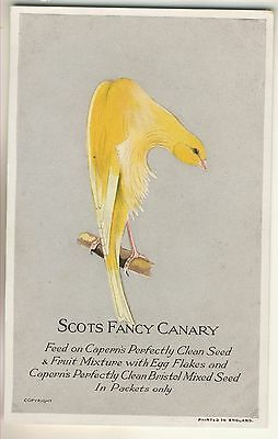 Plain-Back Advertising Card, Capern's Perfectly Clean Seed of Scots Fancy Canary