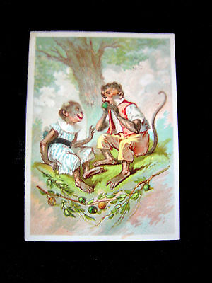 Victorian Trade Card=Anthropomorphic MONKEY COUPLE=CRITERION Tailoring=Boston-MA