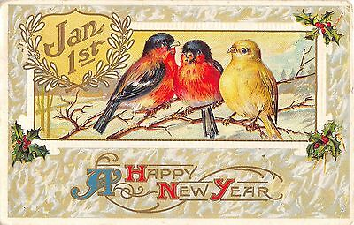 Vintage Postcard of New Year's Birds on Branch 1910's