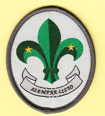 Boy Scout 1st CLASS Badge SPAIN in Spanish