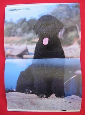 RARE Collectible ~ PORTUGUESE WATER DOG Issue ~ DOG FANCY Magazine ~ Dec 1988 #