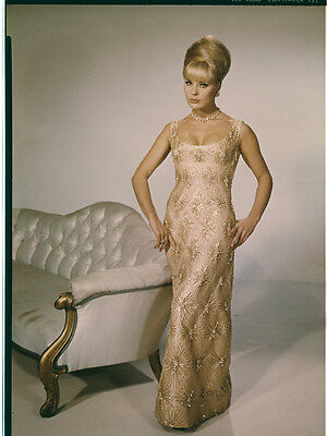 ELKE SOMMER Beautiful Glamour busty pin up Pose Original Photo TRANSPARENCY 8x10