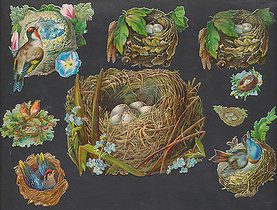 S5020 Victorian Die Cut Scraps: 9 Bird Nests