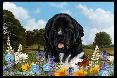 Indoor/Outdoor Summer Floor Mat - Landseer Newfoundland  (TB) 39224