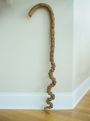 Antique Natural Knobby Curly Wood Hand Made Folk Art Cane Walking Stick