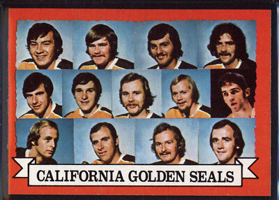 1973-74 Topps #95 Golden Seals Team DP - NM *055-249