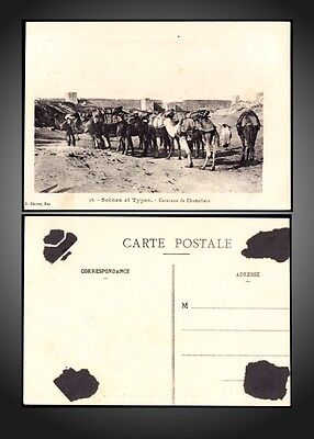 Fez - Morocco - Fortified Wall Caravane Camels Postcard