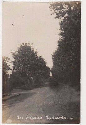 The Avenue Tadworth, Surrey RP Postcard B746