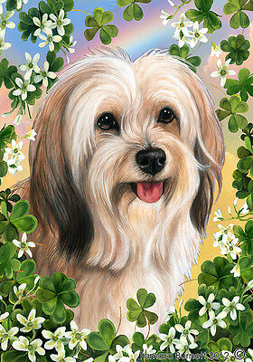 Large Indoor/Outdoor Clover Flag - Fawn Tibetan Terrier 31479