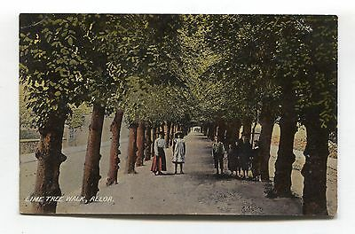 Alloa - Lime Tree Walk - path, children - early postcard, local publisher (Gow)