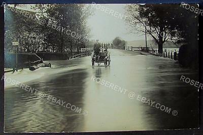 1900s Horse and Trap on a Flooded Road with Bicycle -  Real Photo Postcard