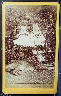c1870s  Baby , Child and old pet  Mongrel Dog - Rossendale area CDV Photo