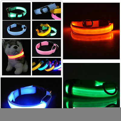 Small Pets Dog Cat LED Lights Flash Night Safety Collar Adjustable S-XL Fashion