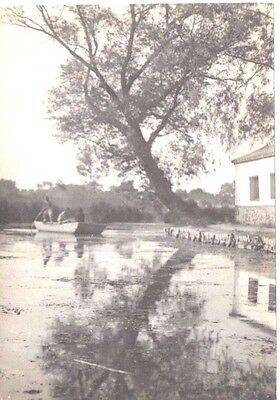 Fantastic and Original, The Lake, Tsinanfu Photo, China. C1912. Very Fine