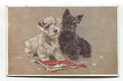 Scottie dogs, chewed-up magazine - old artistic postcard by M. Gear