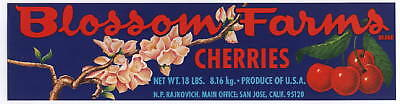 BLOSSOM FARMS Vintage San Jose CA Cherry Crate Label, Bloom, *AN ORIGINAL LABEL*
